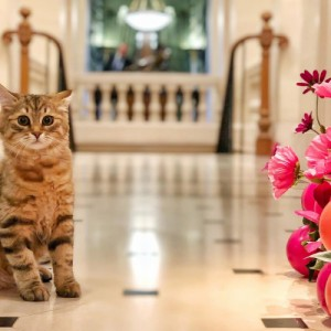 Hóspede felino: hotel The Lanesborough London apresenta Lilibet